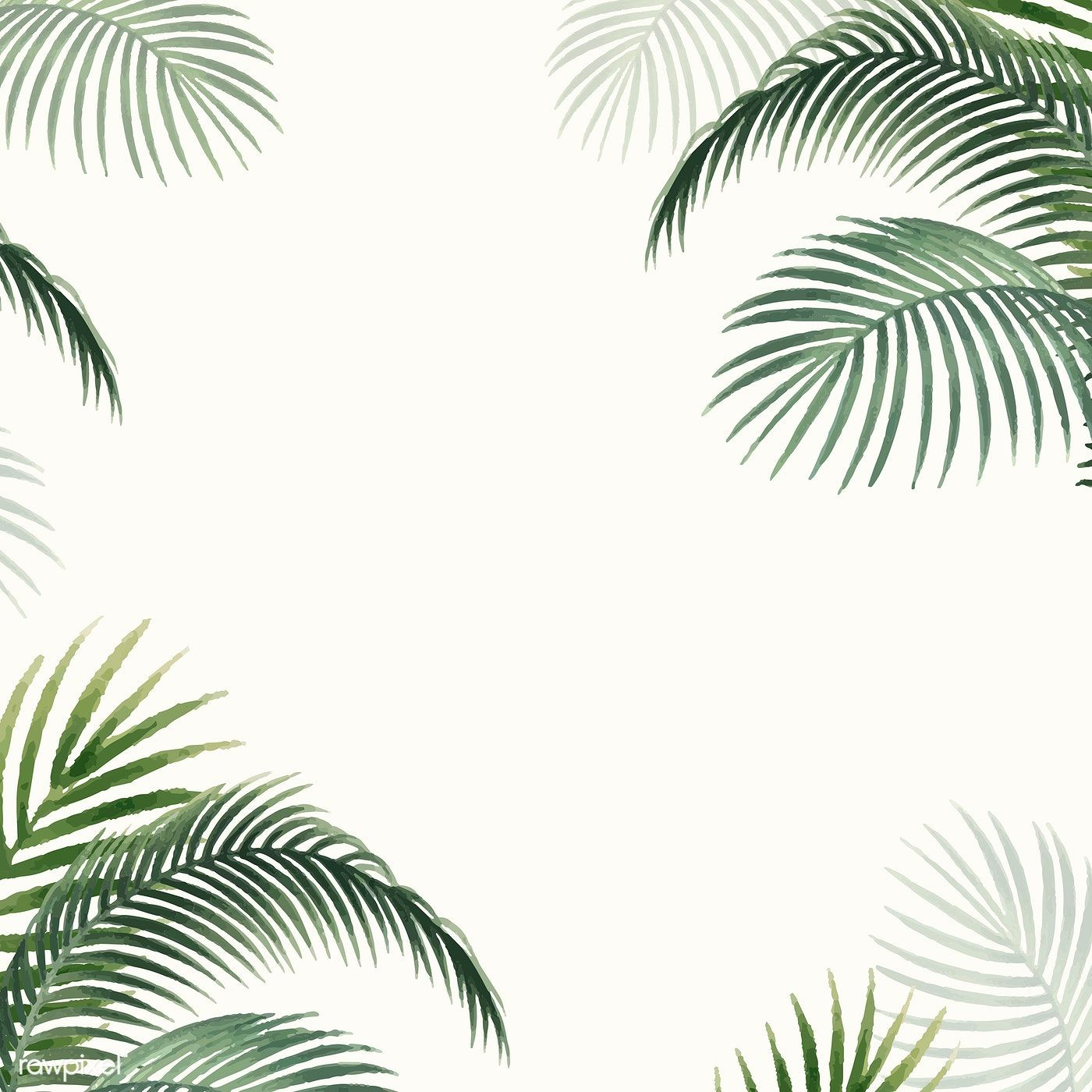 Download Premium Vector Of Frame With Palm Leaves Vintage Illustration Palm Leaves Vintage Illustration Free Frames