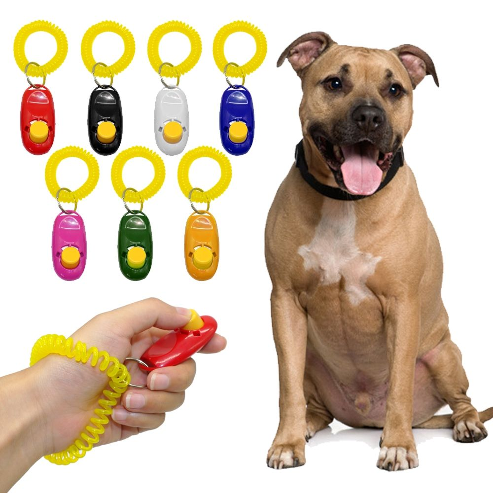 Dog S Training Clicker Dog Training Dog Clicker Training