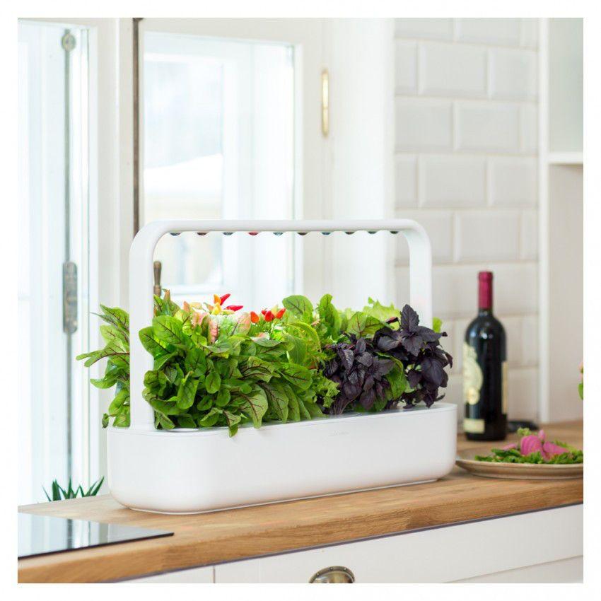 Smart Garden 9 In 2020 Smart Garden Inside Garden 400 x 300