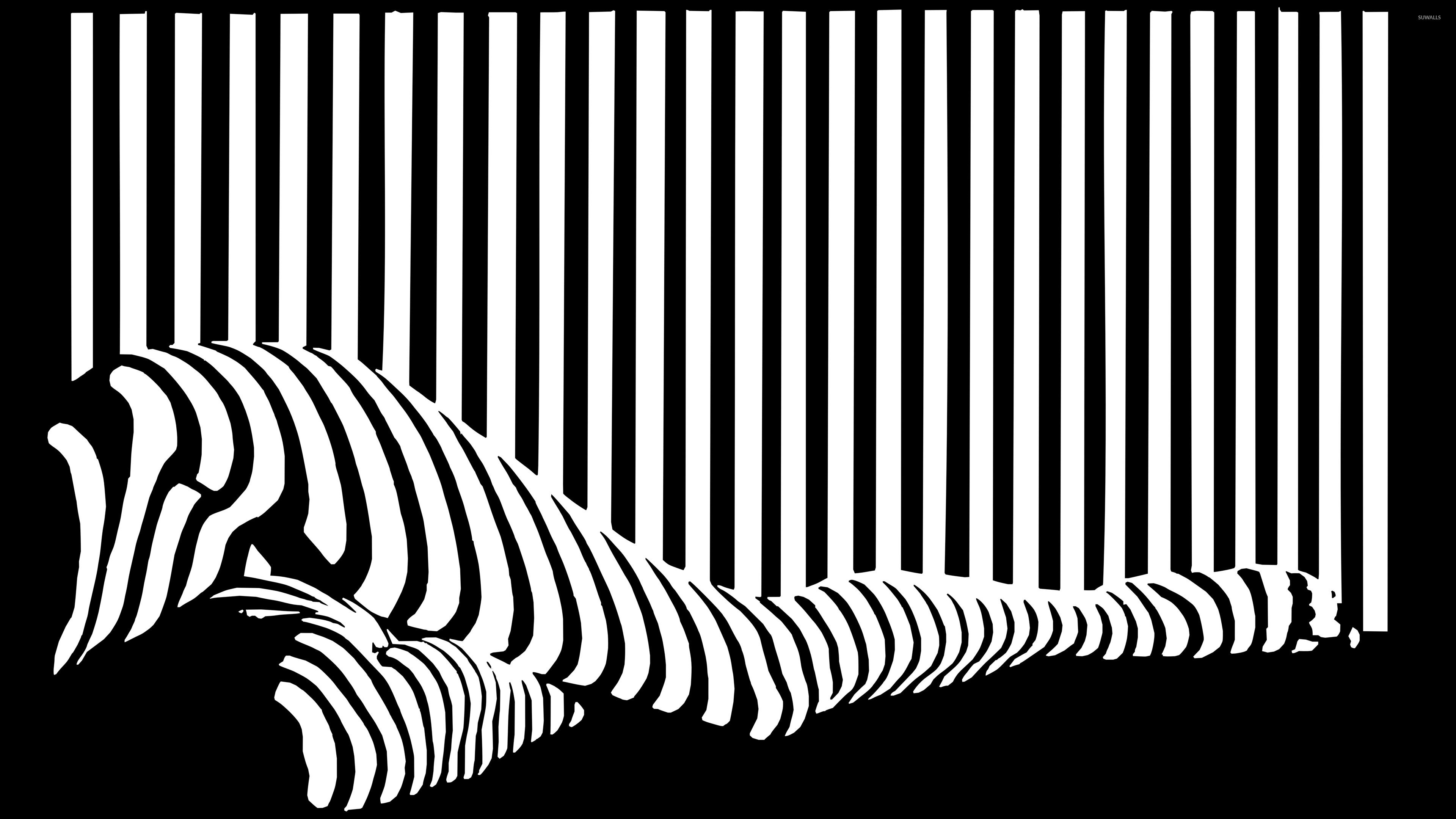Magnificent Black And White Stripes Decorations Damput Home Abstract Black And White Abstract Wallpaper Ideas for black and white wallpaper hd