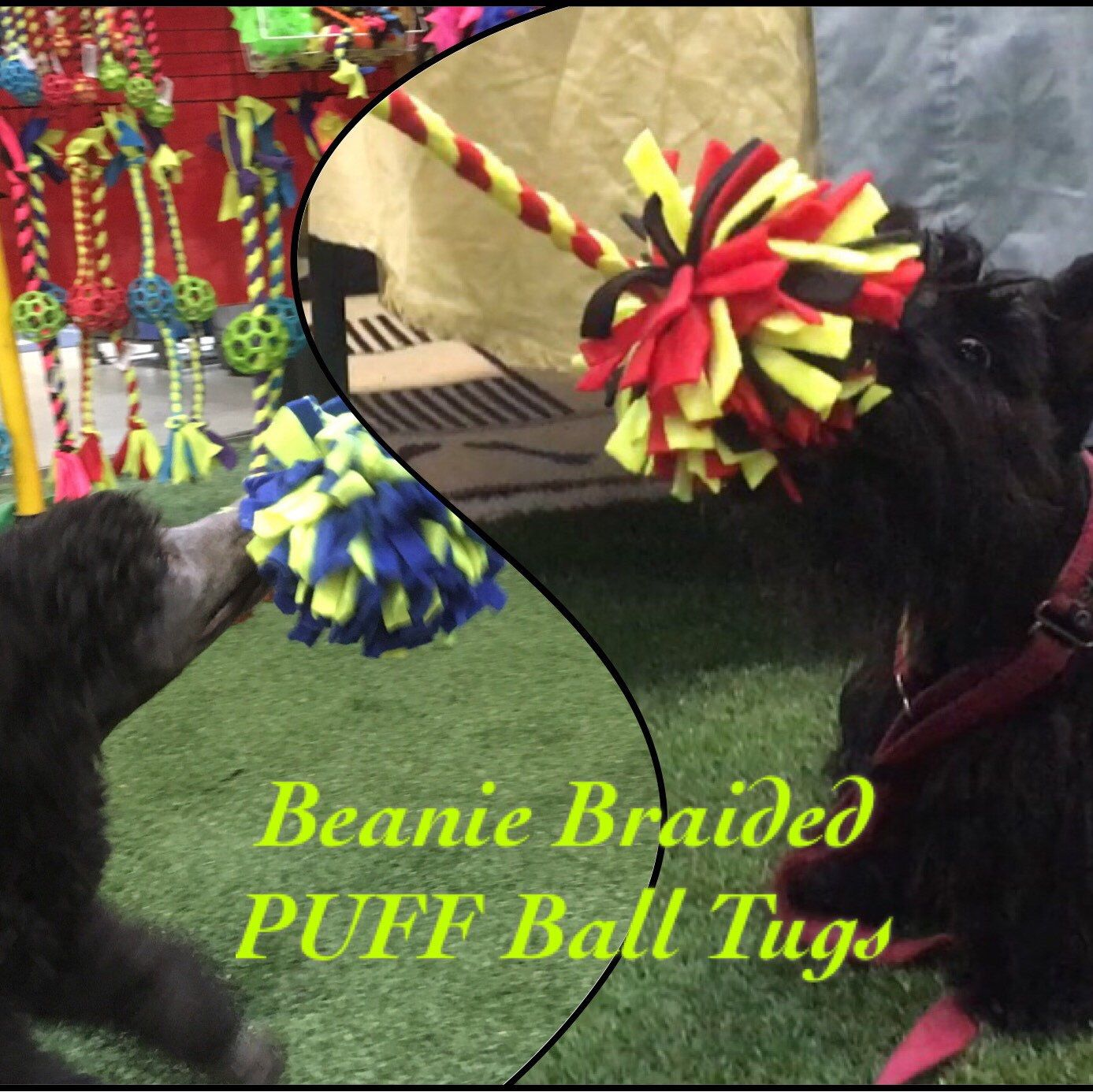 """New"" .....Beanie Braided PUFF Ball Tugs are now available in our Etsy Shop! PUFF Balls are soft on dogs mouth, fringe increases dogs excitement to encourage lots of tugging & chasing fun...perfect for puppies and dogs of all sizes!!"