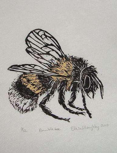 Entomology Diagram Bee
