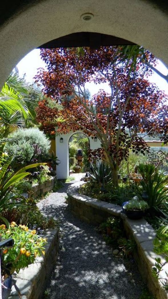GardenEnvy: Decidedly Spanish Garden Definitely In San Diego #courtyardgarden #spanish #courtyard #garden
