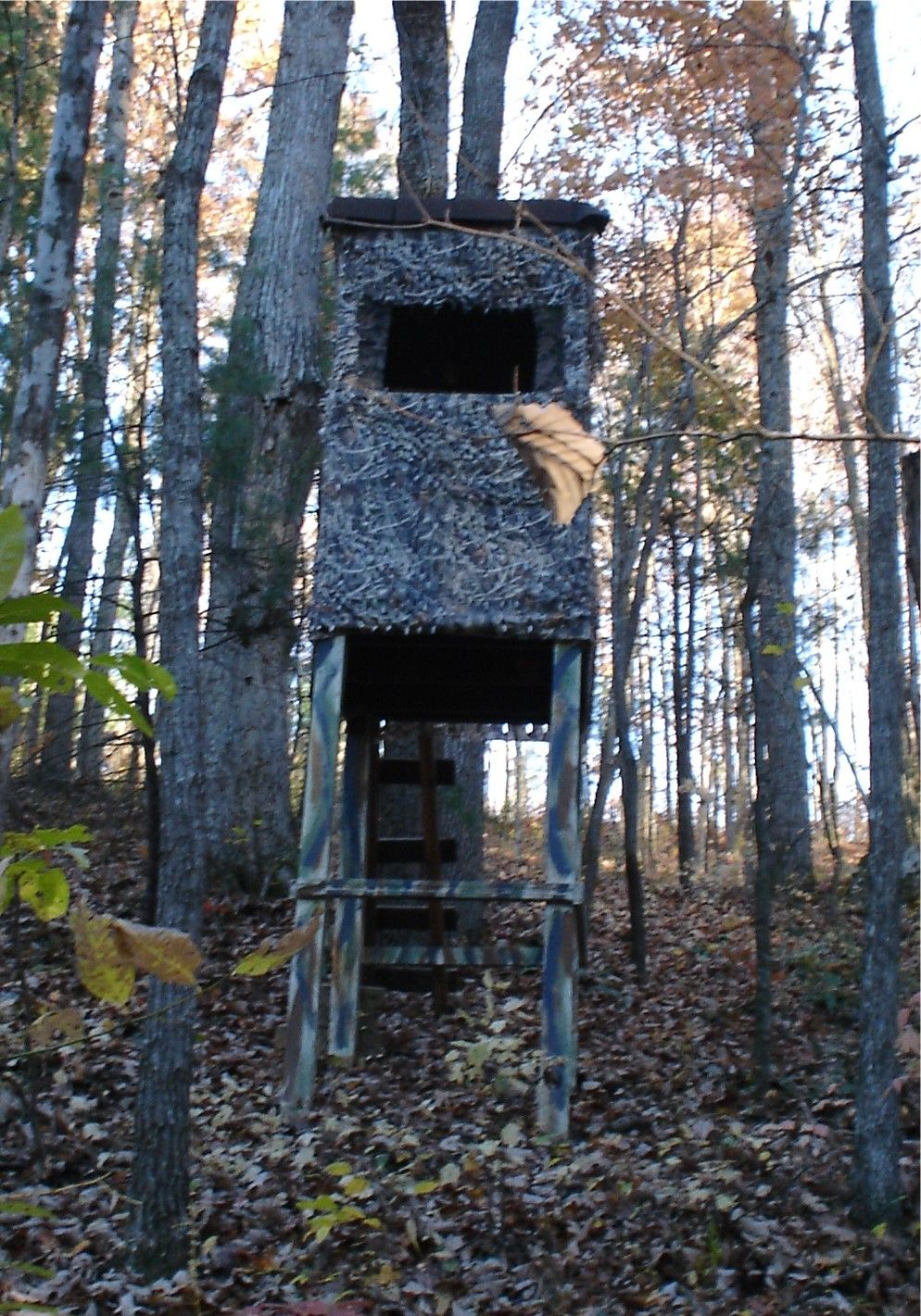 My Deer Blind Favorite Places Amp Spaces Pinterest