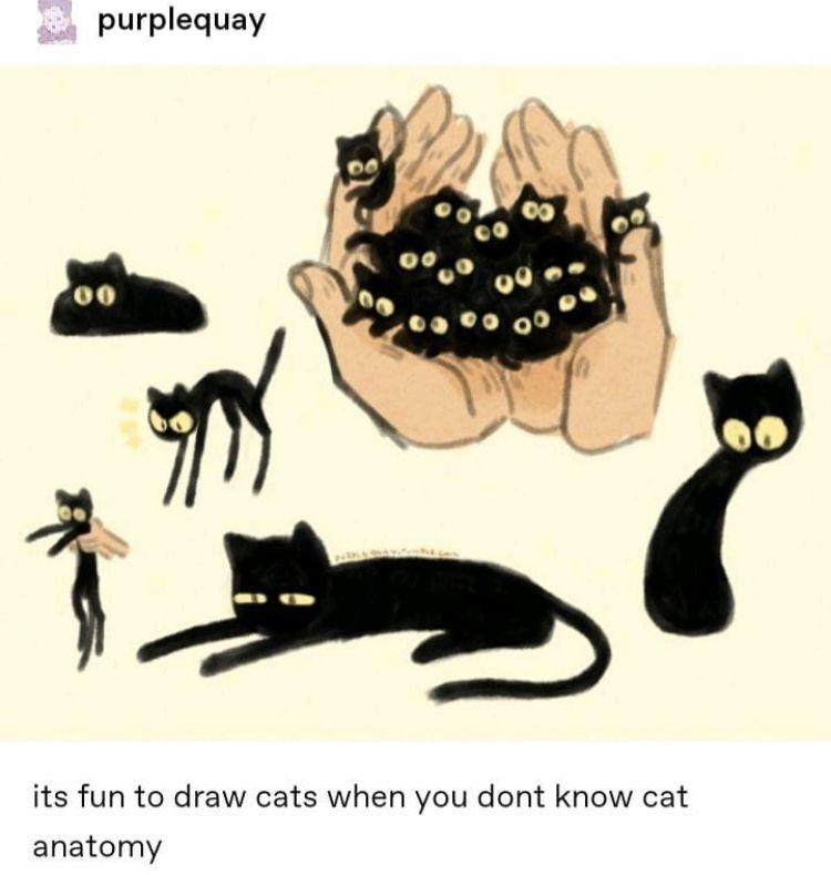 Credit In Photo Cat Art Cute Art Animated Animals