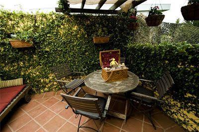 como decorar patios pequeos patios y jardines