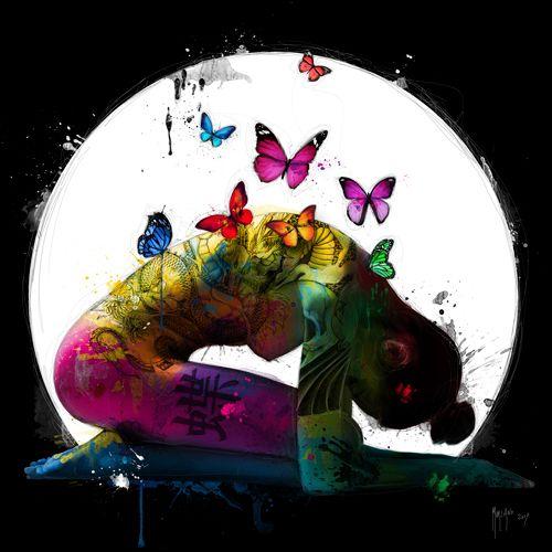 Butterfly Dream Patrics Murciano Butterfly