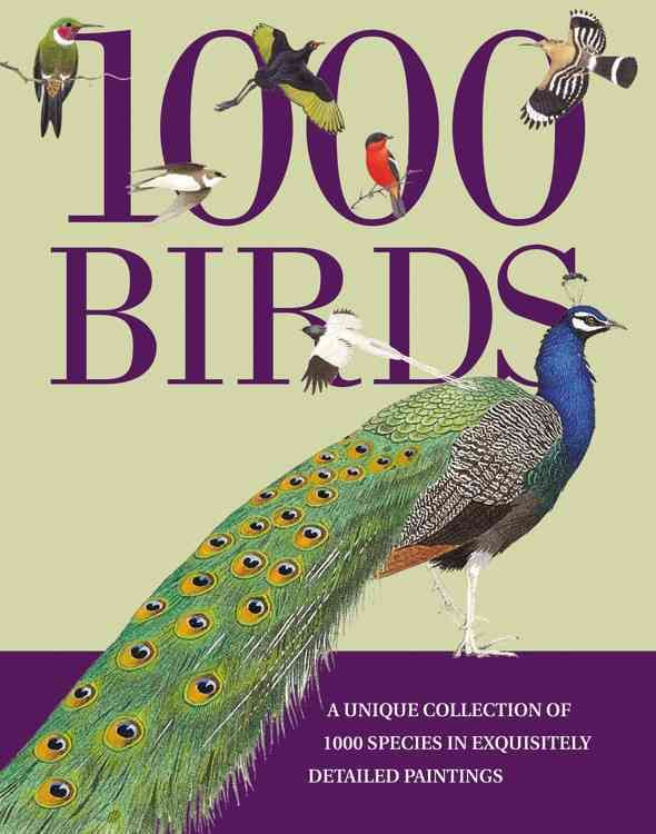 1000 Birds A Unique Collection Of Species In Exquisitely Detailed Paintings