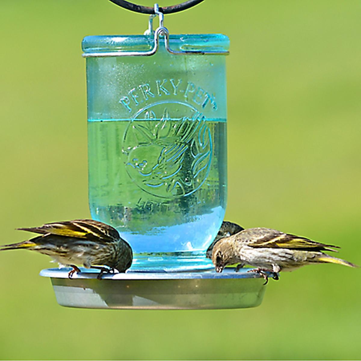 Mason Jar Wild Bird Waterer Humming Bird Feeders Bird Feeders Wild Bird Feeders