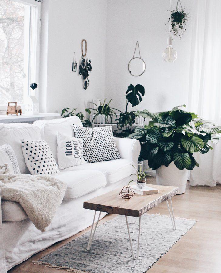 Ein bisschen Urwald im Wohnzimmer Urwald, Solebich und Sofa couch - Decken Deko Wohnzimmer
