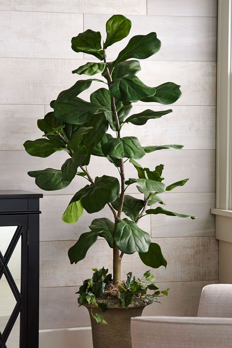 These Fake Plants Look So Real They Ll Fool Everyone With Images Fake Plants Plants Potted Trees