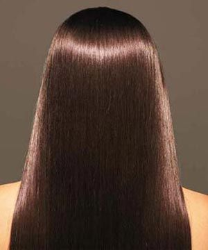 Chestnut Henna Hair Dye Chestnut Henna Hair Dye Manufacturers