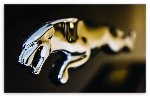 Jaguar Logo Close Up Jaguar Car Logo Car Wallpapers Jaguar Car