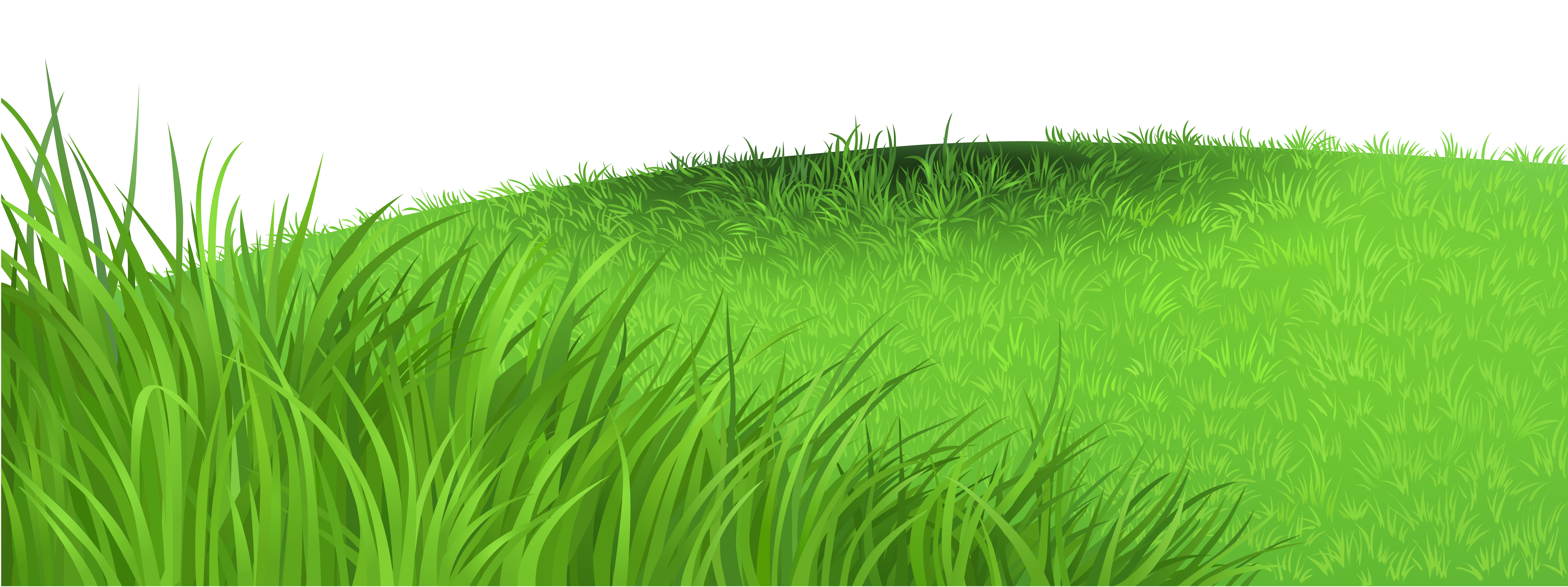 medium resolution of clipart free grass high quality images photo art texture arts