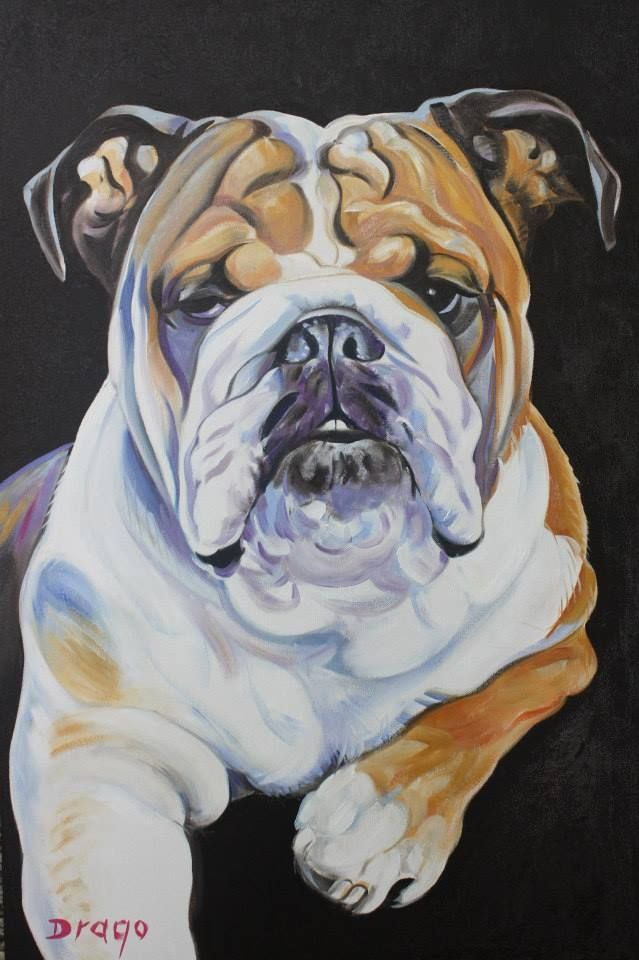 Bulldog painting by Drago Milic Dessin chien