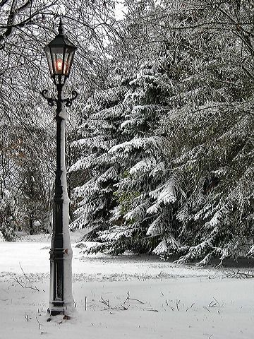 Narnia Lamppost In The White Of Winter Place To Hang A