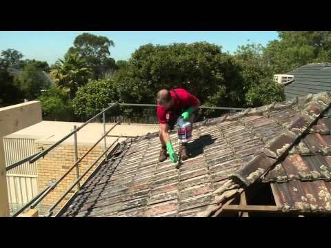 Removing Lichen From Asphalt Shingles In 2020 Roof Cleaning Roof Tiles Roof