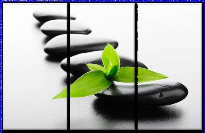 Obraz Zen Kamene zs6802 | Obrazy Feng shui. | DECOTREND