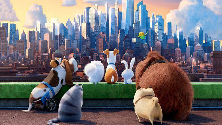 Nonton Film The Secret Life Of Pets 2016 Online Subtitle Indonesia Film Baru Film Animasi Film