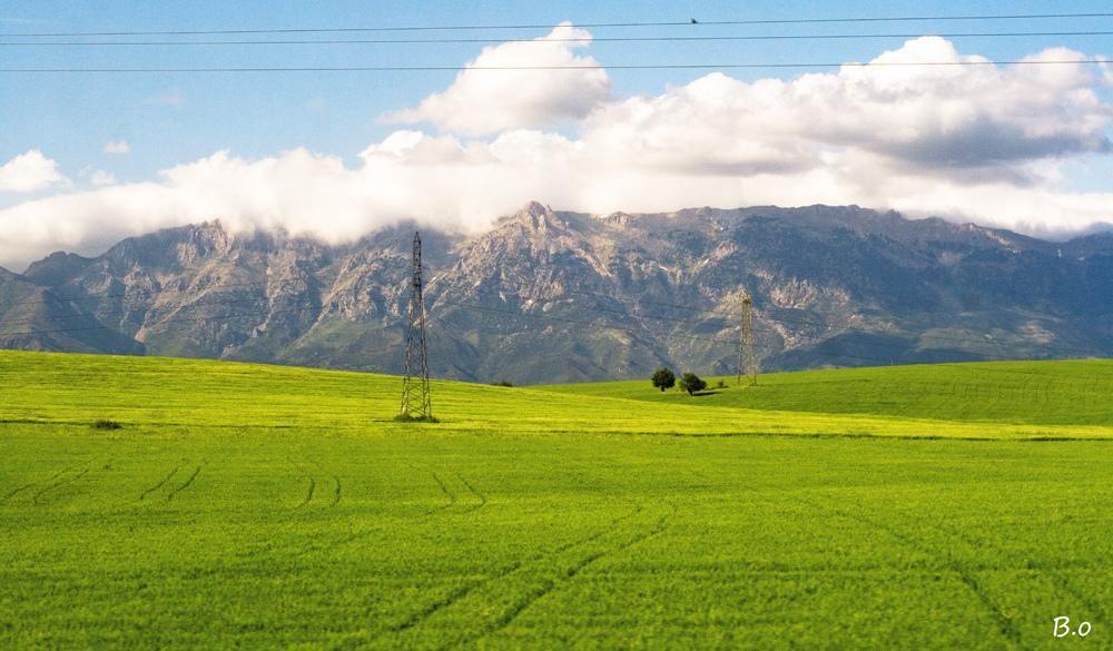 4 _ محمية جرجرة ( ولاية تيزي وزو) تضم جبال جرجرة التي تعد من اجمل جبال العالم تكسوها الثلوج من بداية فصل الخريف الى نهاية فصل الربيع