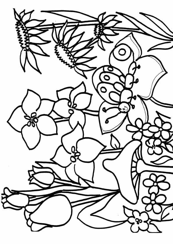 Wiosenne Kolorowanki Do Wydruku Dla Dzieci 1 Ptaki Kwiaty Pani