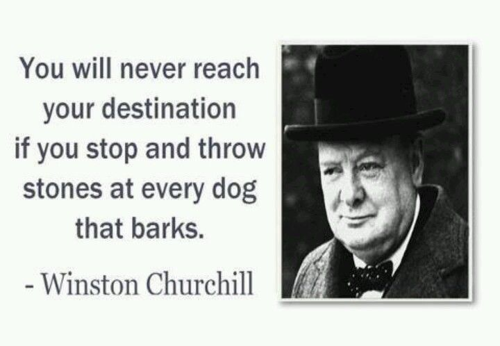 You will never reach your destination if you stop to throw stones at every dog that barks