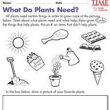 image result for worksheet on plants around us for grade 2 desktop kindergarten worksheets. Black Bedroom Furniture Sets. Home Design Ideas
