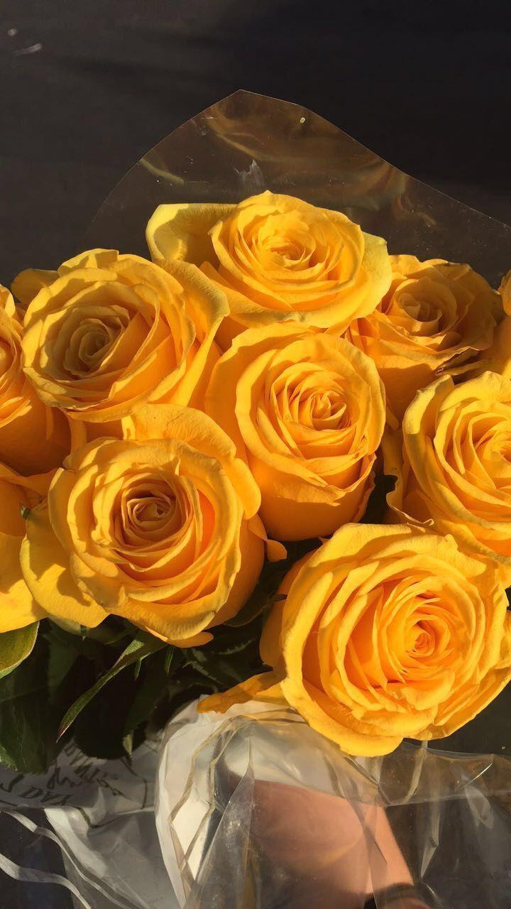 gelbe ästhetische gelbe Blumen Grunge Pastell ����� ���... , #Ästhetische #Blumen #gelbe #gr...