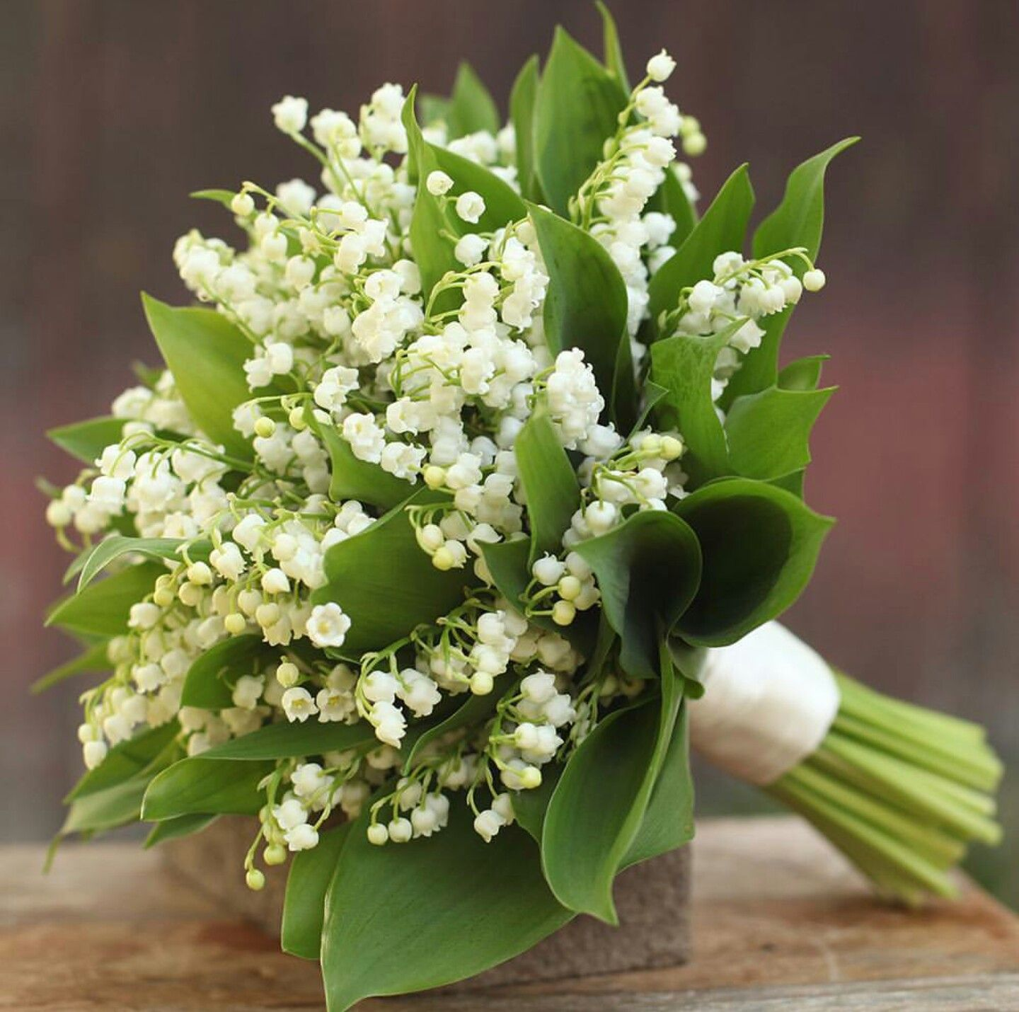 Beautiful Wedding Bouquet Of White Lily Of The Valley Foliage