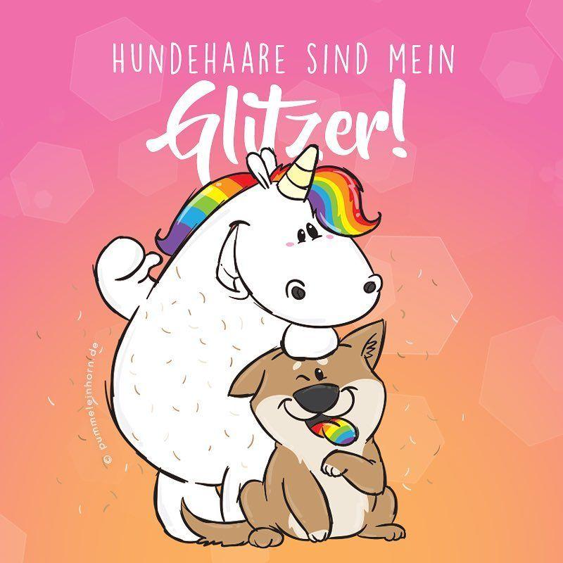 glitzertolle hundehaare pummellove love einhorn happy