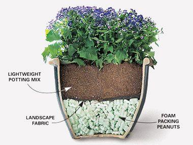 Garden Design For Beginners 10 expert gardening tips for beginners | gardening, garden ideas