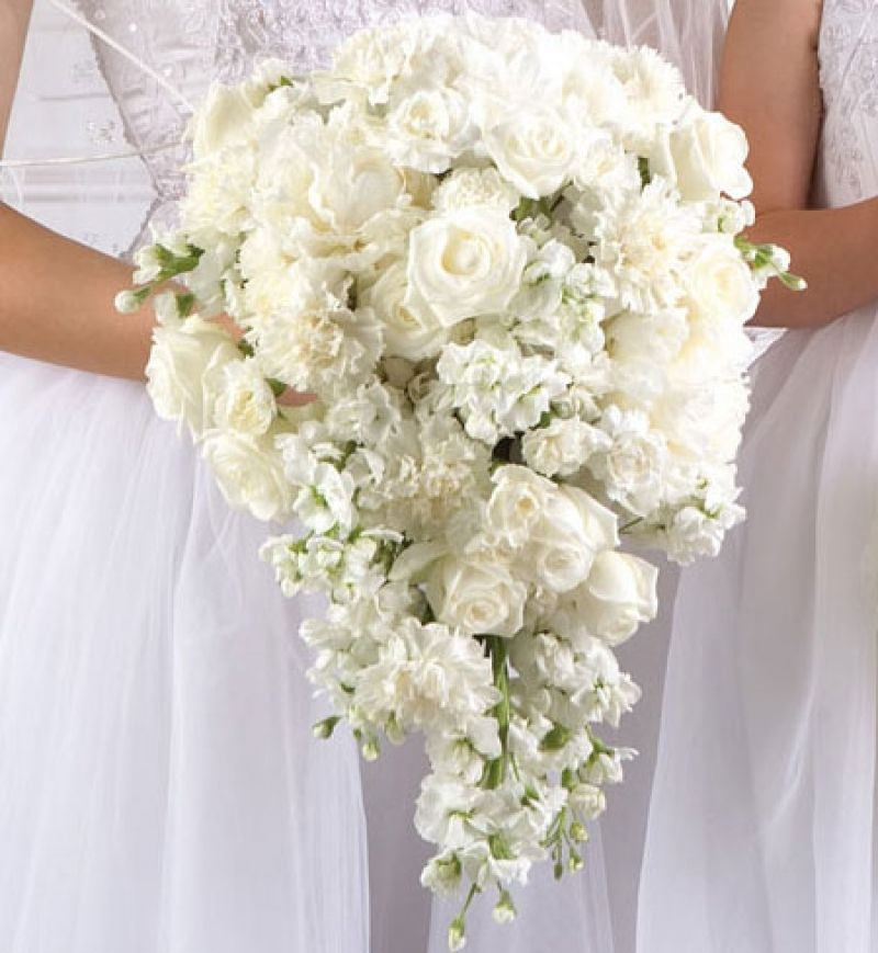 Famousipod Berbagi Informasi Tentang Pertanian Buket Pengantin Buket Putih Bunga Perkawinan