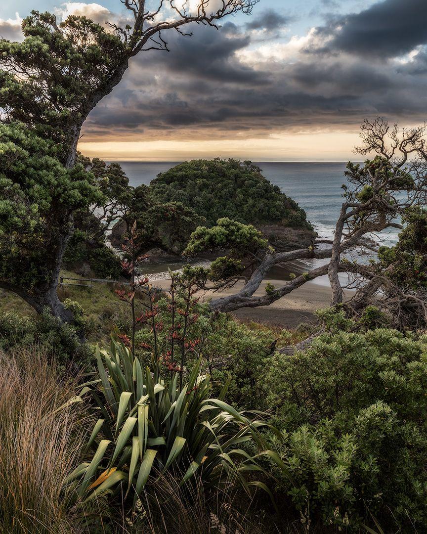 NZ Coast Essentials  Website   Instagram