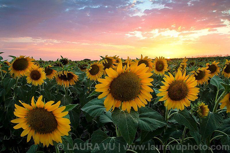 Personal Favorites Landscape Photos Landscape Photography Landscape Scenic Landscape