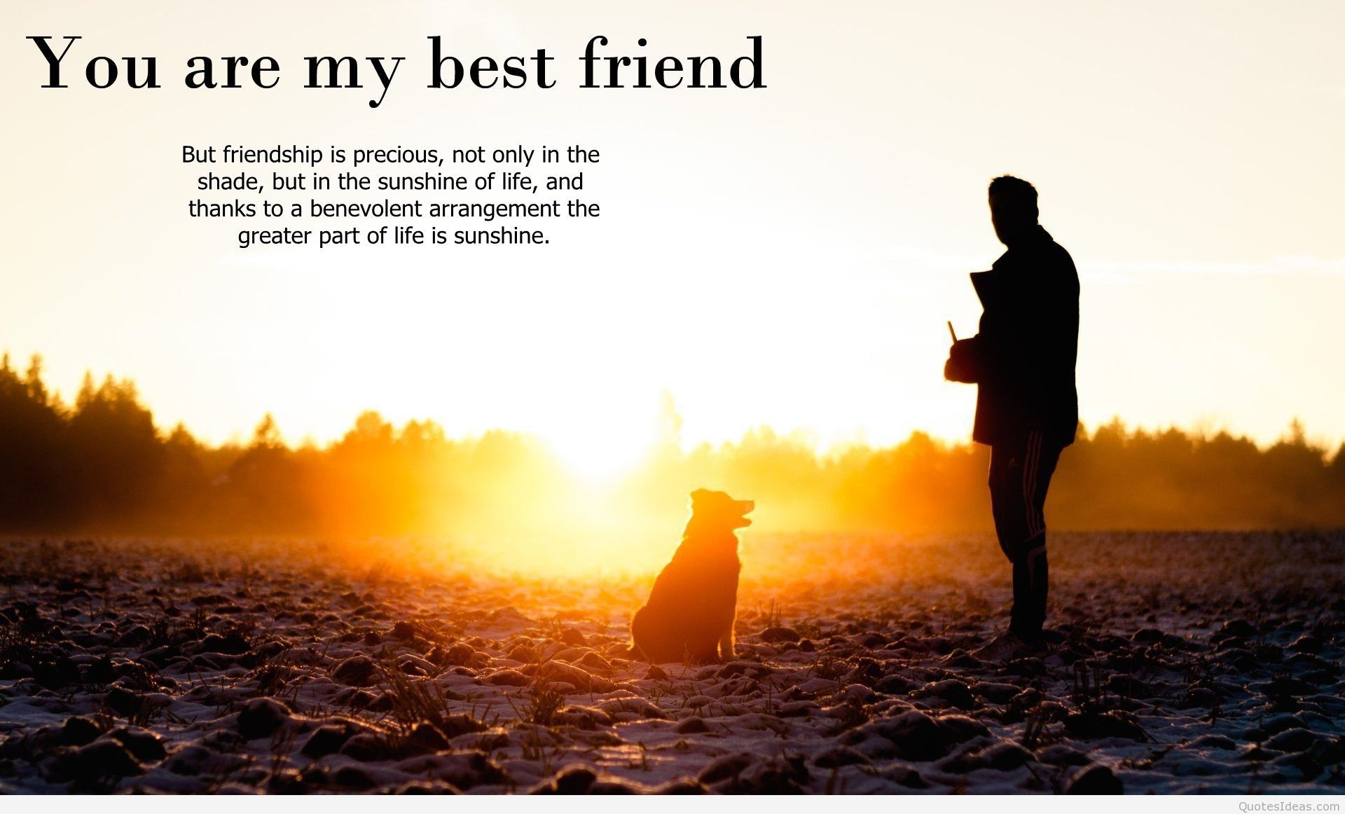 best friends wallpapers 1600×1200 best friend pic wallpapers (32