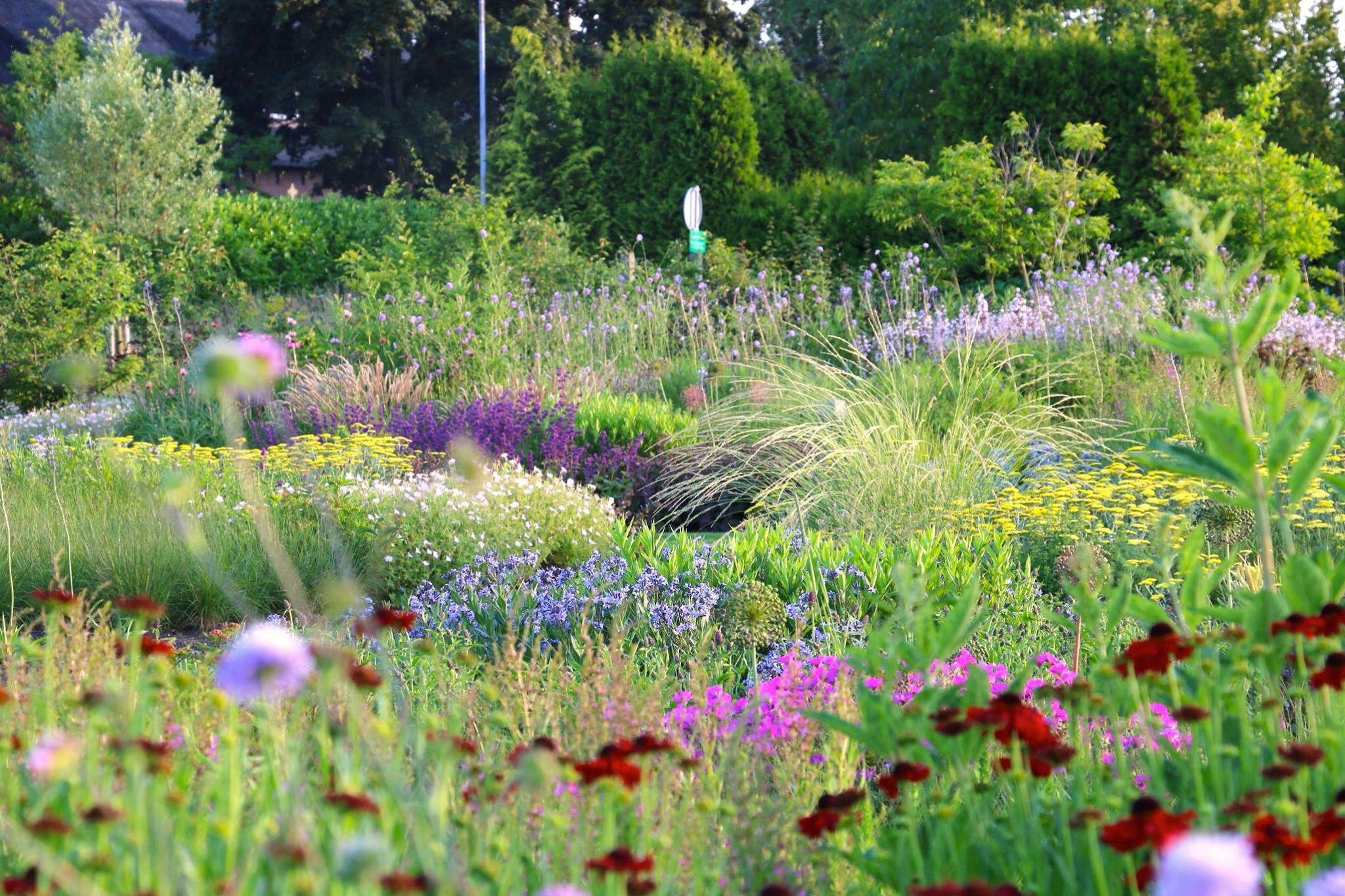 2015 vlinderhof maximapark utrecht piet oudolf for Piet oudolf pflanzplan