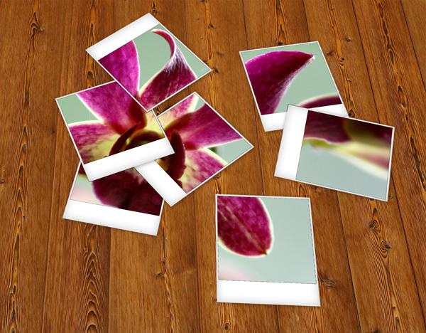 Quick Tip: Create a Set of Scattered Polaroids - Tuts+ Design & Illustration Tutorial