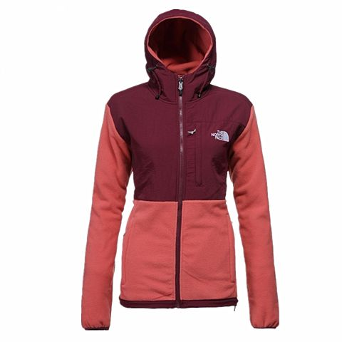 The North Face Denali Hoodie New Style-10605