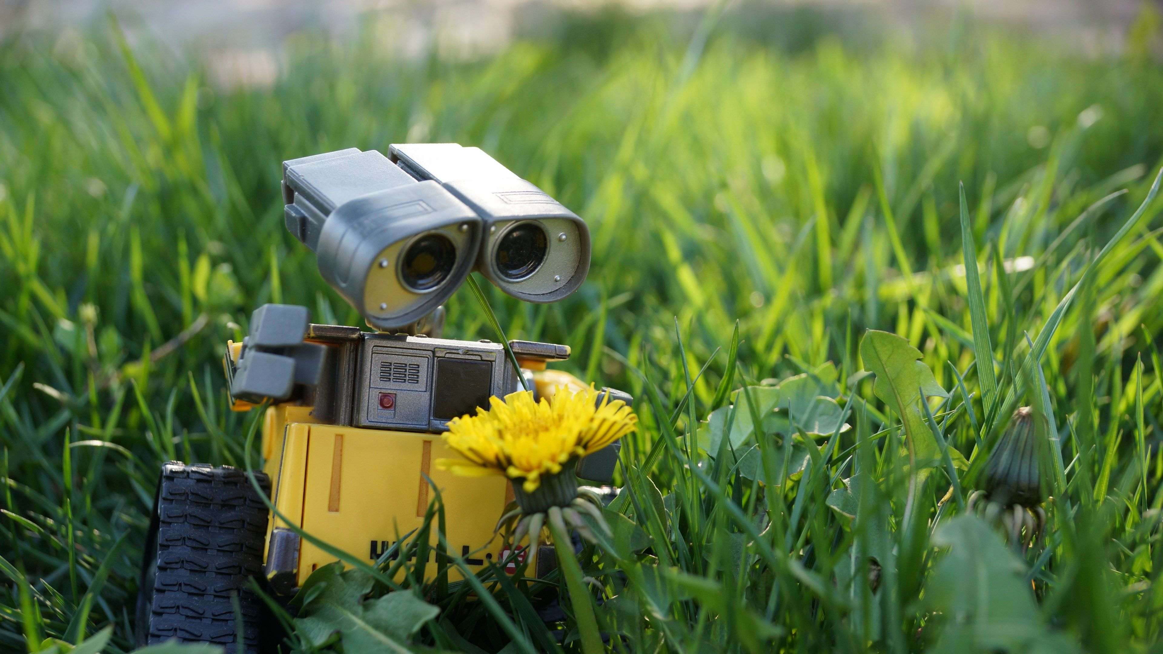 wall e robot wallpapers | ololoshenka | pinterest | robot