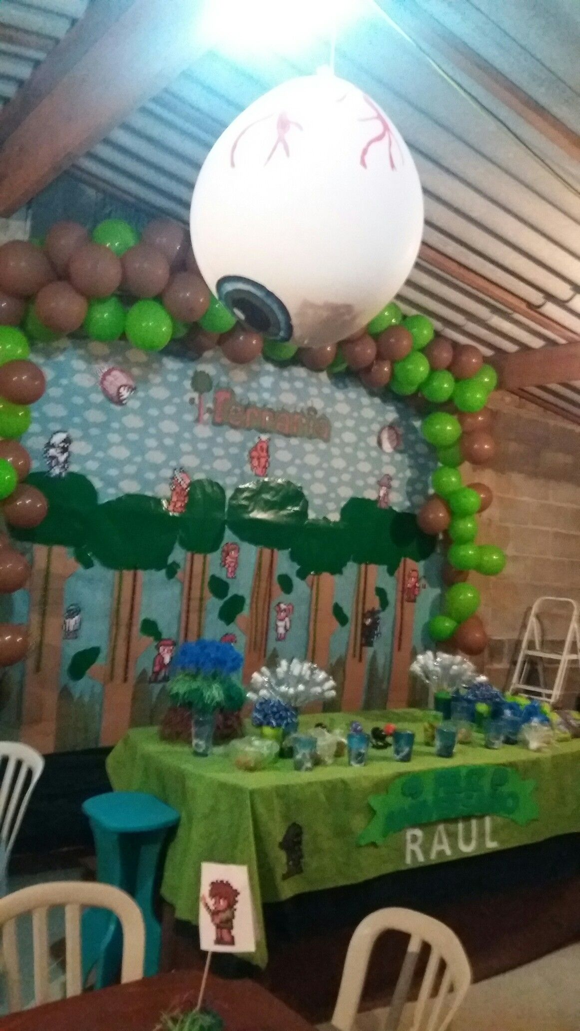 terraria party ideas | terraria | pinterest | party, terrarium and
