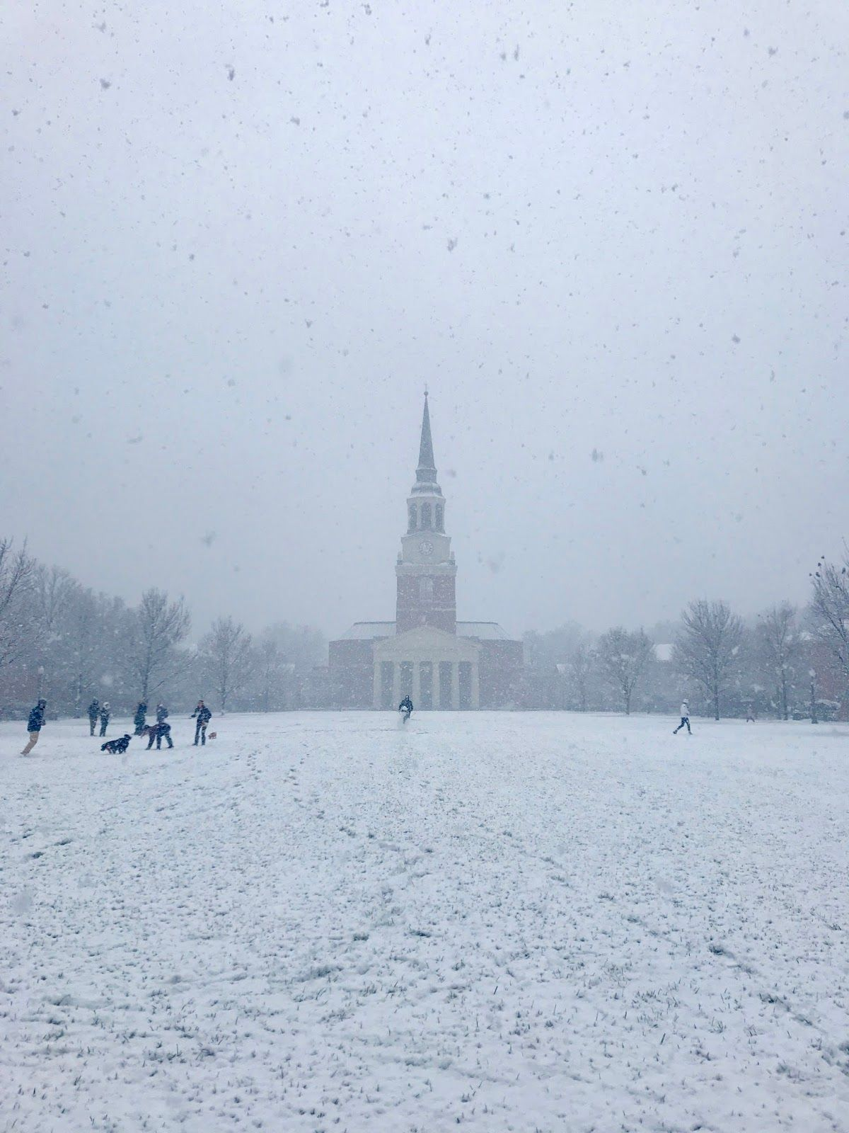 Happy snow day wake forest university wake forest