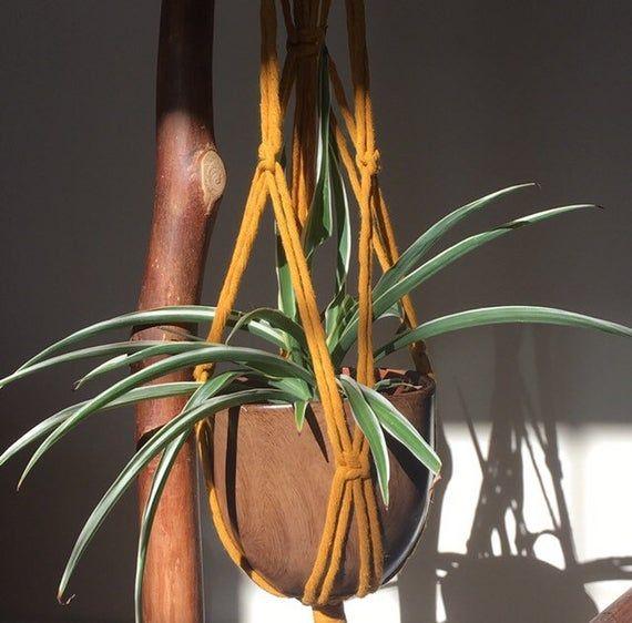 Macrame plant hanger, mustard yellow, hanging plant holder, indoor garden, hanging planter, boho hom #hangingplantsindoor