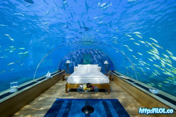 how wonderful would it be to fall asleep and wake up in your own personal aquarium!