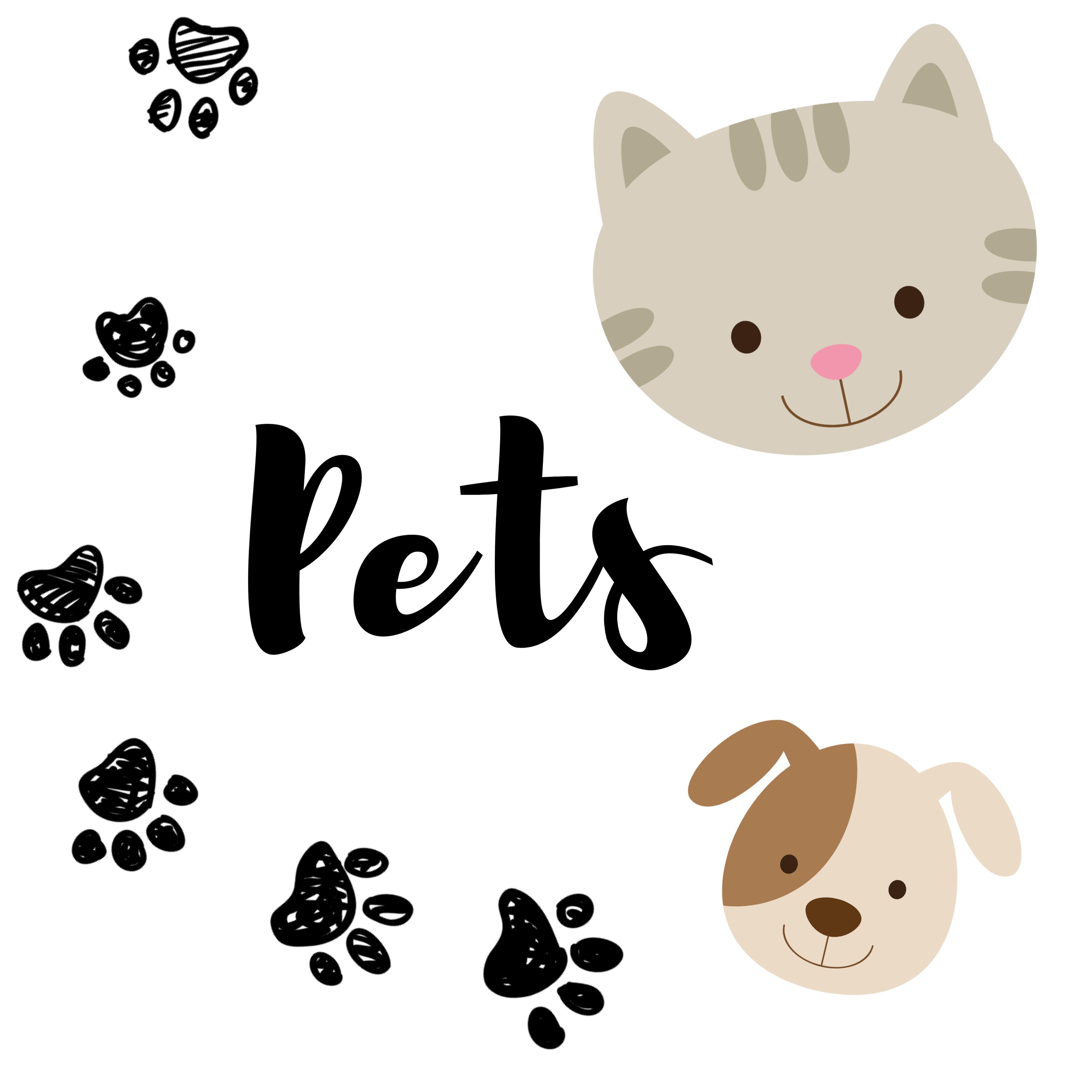 Pet Crafts For Kids Toddler Preschool Kindergarten In