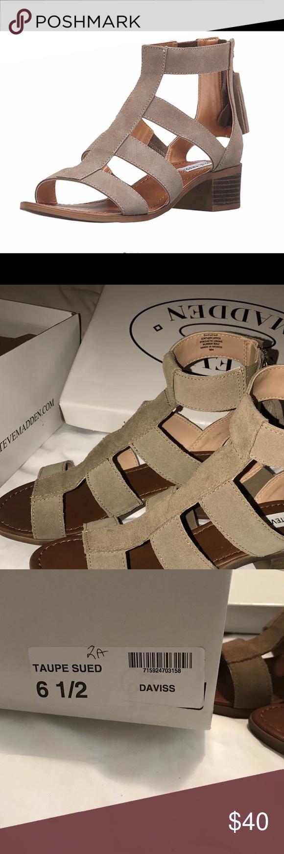 8f75bf58342c 6.5  STEVE MADDEN DAVISS GLADIATOR SANDAL In style suede Steve Madden Sandal  with tassel zip backing Steve Madden Shoes Sandals