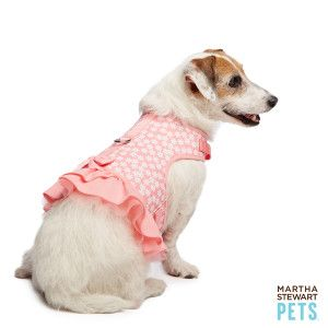 Martha Stewart Pets Floral Dress Harness Harnesses Petsmart Martha Stewart Pets Dog Dresses Pets