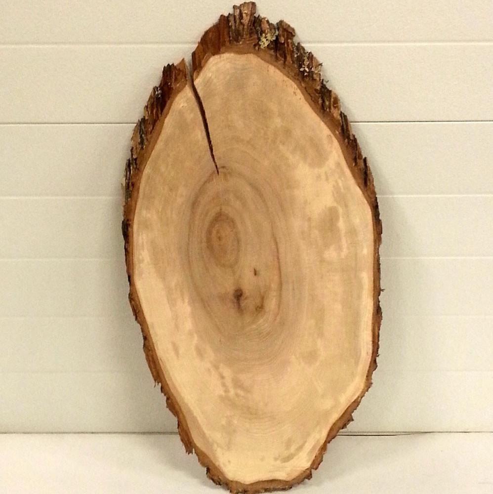 Rustic Maple Tree Slice