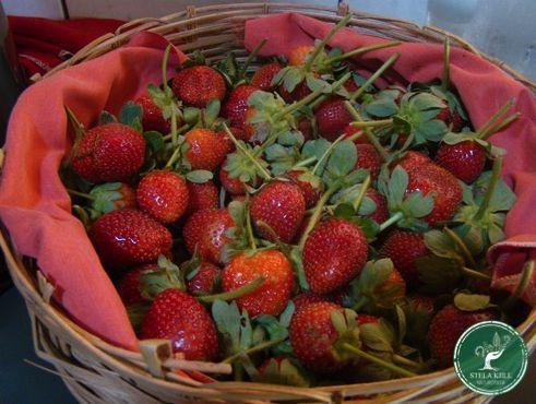 Mosaico Natural Alimento Organico