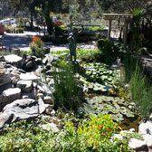 6486a01a814ac131a7c25f8428516734 - Myrtle Creek Botanical Gardens & Nursery Fallbrook Ca