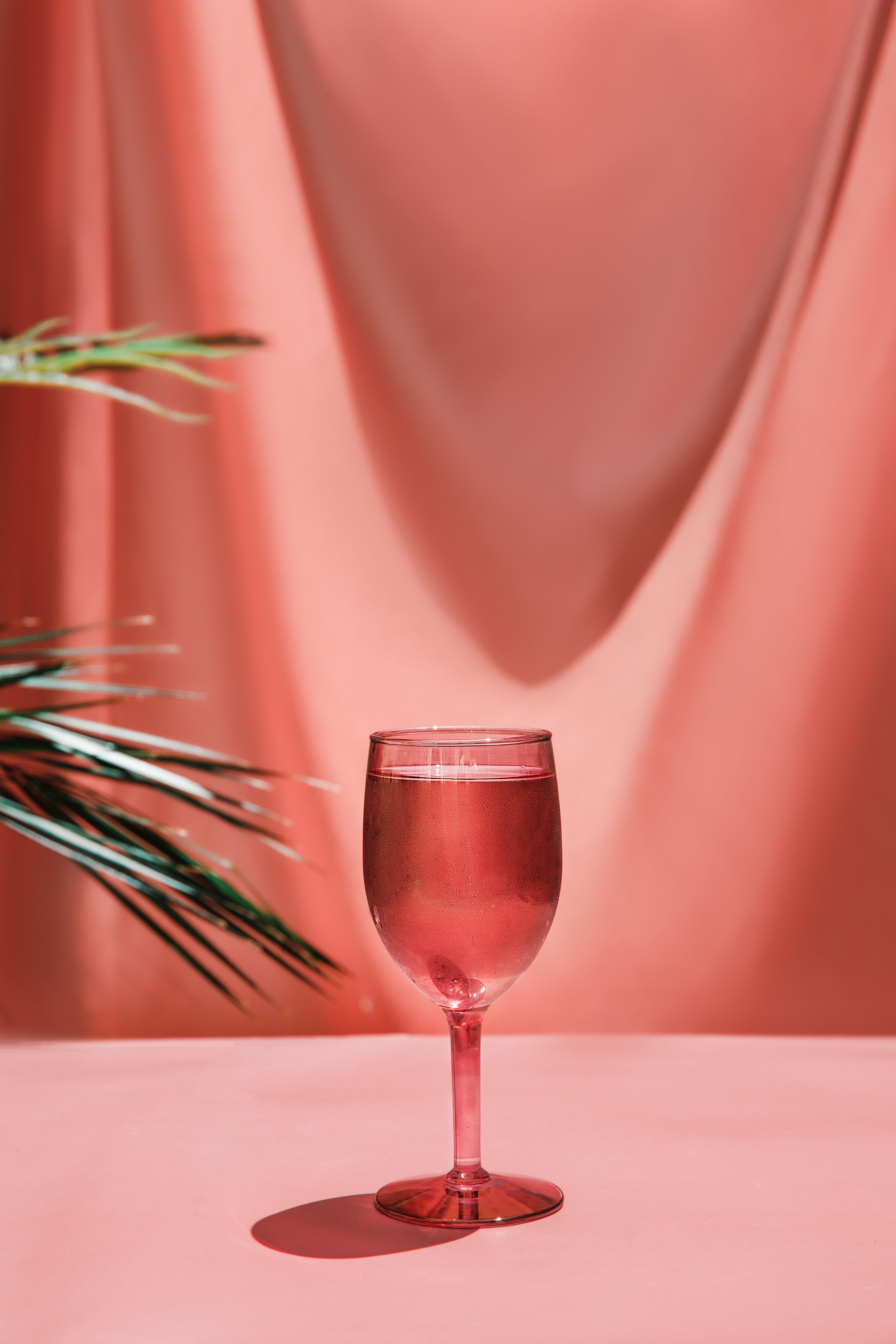 Rose Pink Summer Wine Glass Aesthetic In 2020 Summer Wines Glass Photography